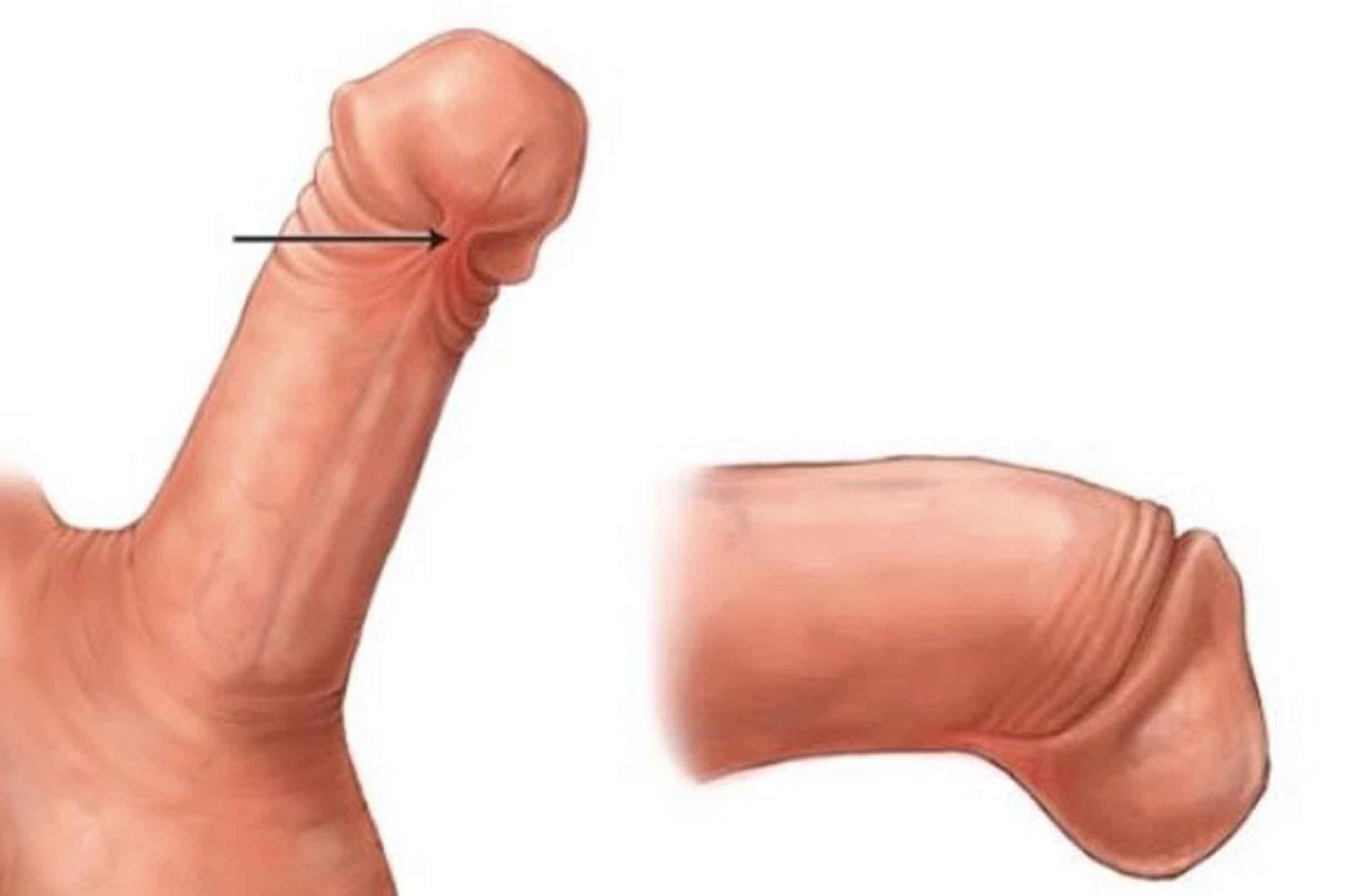 penisul va urca și